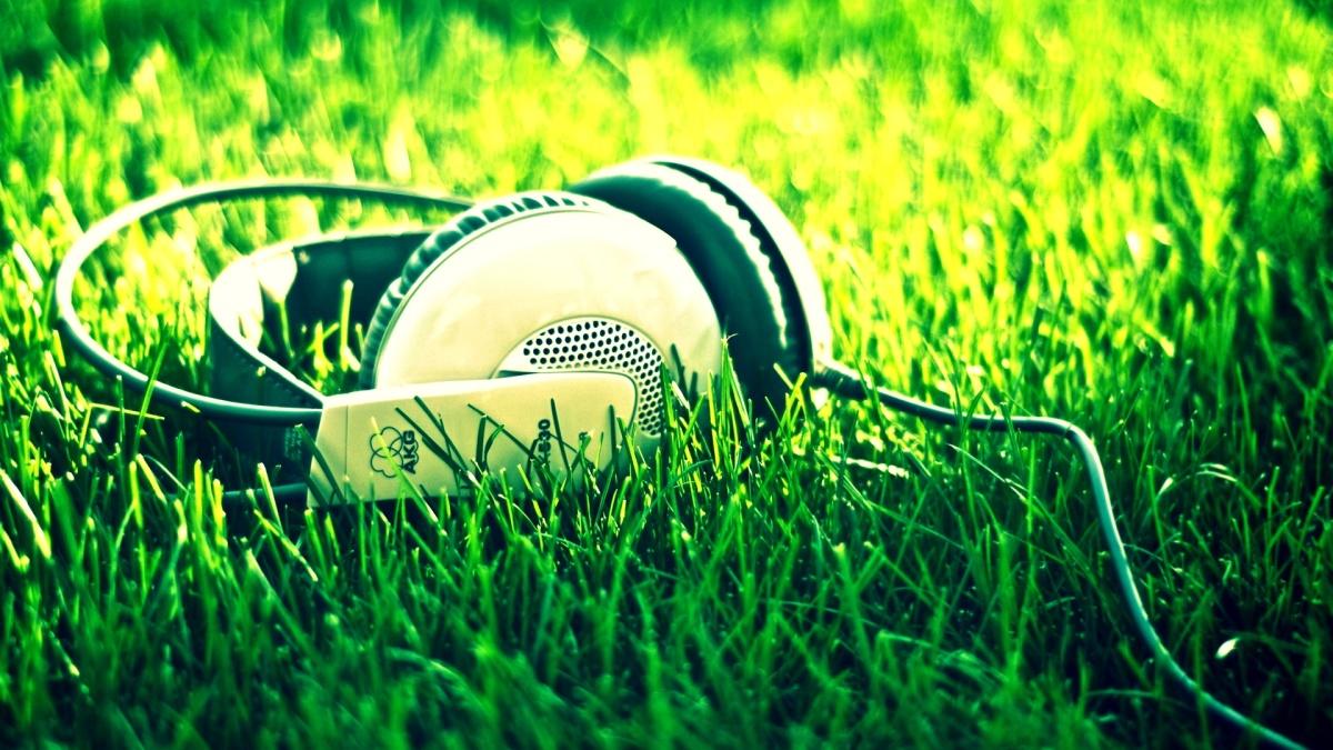 NETP Bets | Recomendaciones musicales de artistas desconocidos